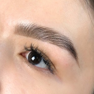 WOW Brows (Brow Lamination)